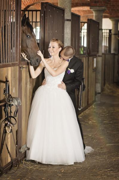 wesele, zabawa weselna 704