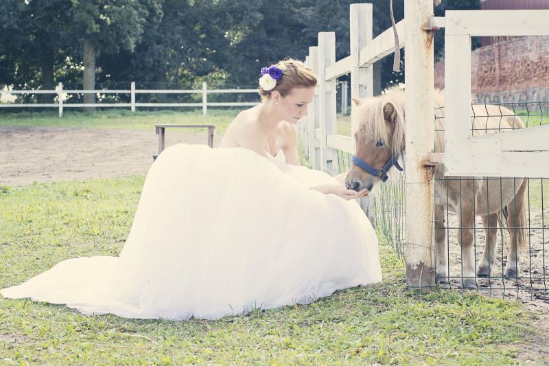 wesele, zabawa weselna 715