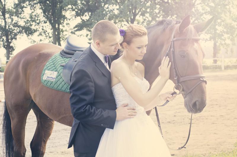 wesele, zabawa weselna 716