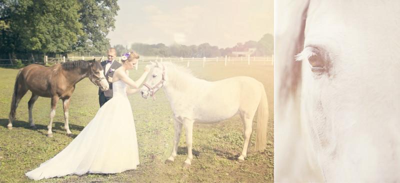 wesele, zabawa weselna 781